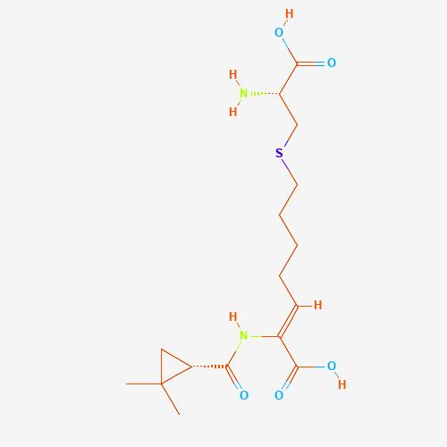 Imipenem + Cilastain